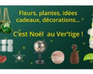 Flyer Noël du fleuriste Au Ver'tige
